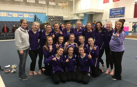 Eagles Gymnastics named East Division Champs