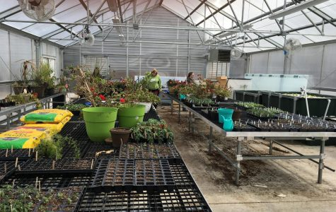 NUHS Green House and Aquaponics Unit