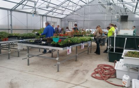 NUHS Students Sell Plants to the Public
