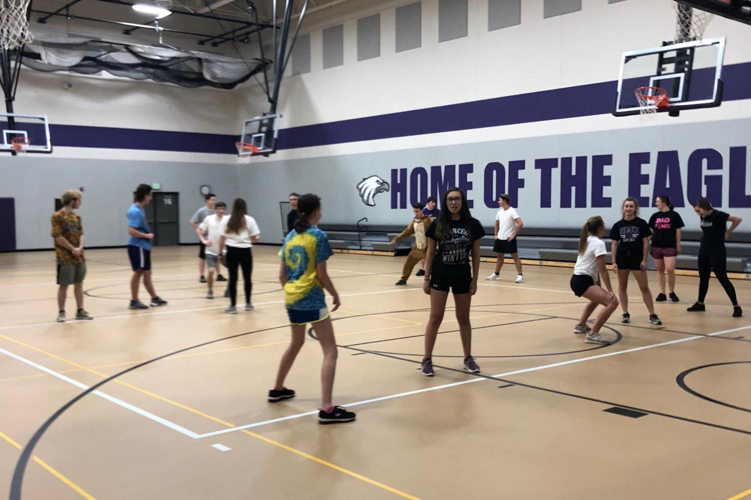 ZUMBA- Mrs. Olson's Lifetime Activities class busts some moves and breaks a sweat by following a Zumba teacher last week.