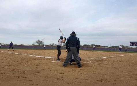 Eagle Softball Starts Up