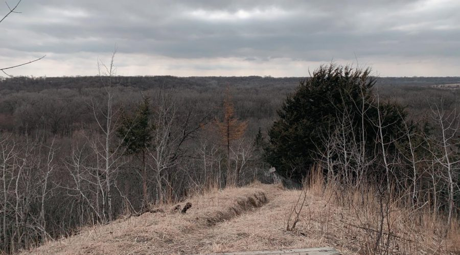 A few from the top of one of Flandru State Park's hiking trails.