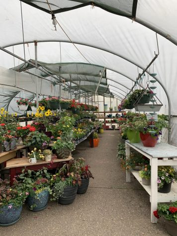During the stay at home order, greenhouses are considered an essential business and continue to stay open.