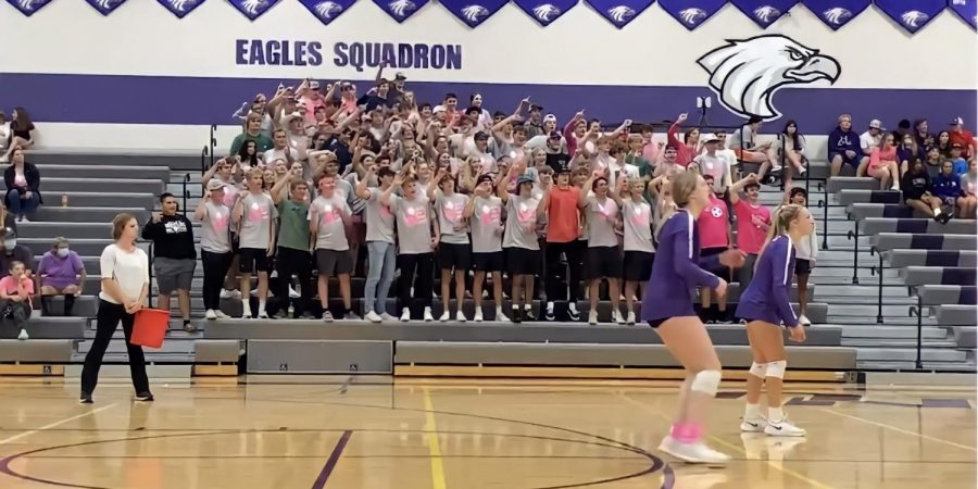 The Eagles Squadron don their pink in support of the New Ulm volleyball team during Volley for a Cure Night